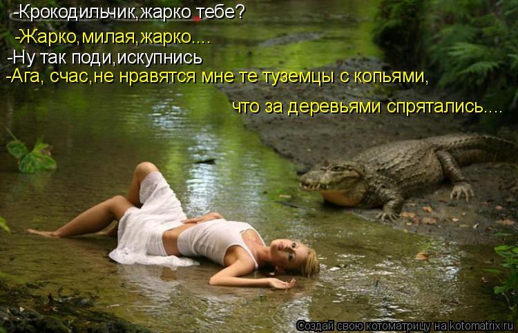 Котоматрица: -Крокодильчик,жарко тебе? -Жарко,милая,жарко.... -Ну так поди,искупнись -Ага, счас,не нравятся мне те туземцы с копьями, что за деревьями спрята