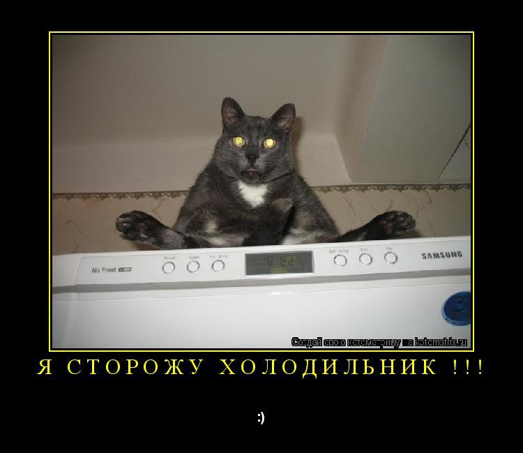 Котоматрица: я сторожу холодильник !!! :)