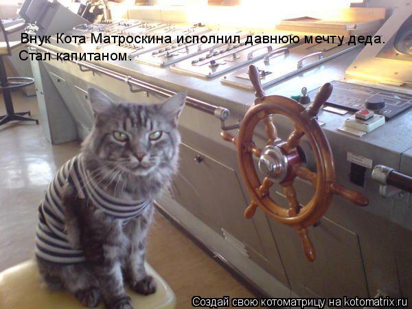 Котоматрица: Внук Кота Матроскина исполнил давнюю мечту деда.  Стал капитаном.
