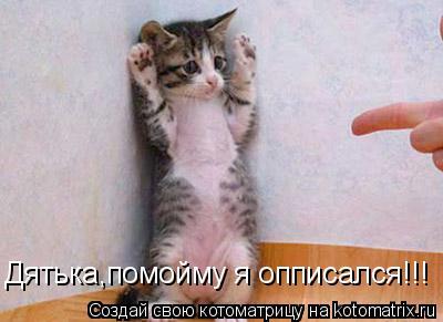 Котоматрица: Дятька,помойму я опписался!!!