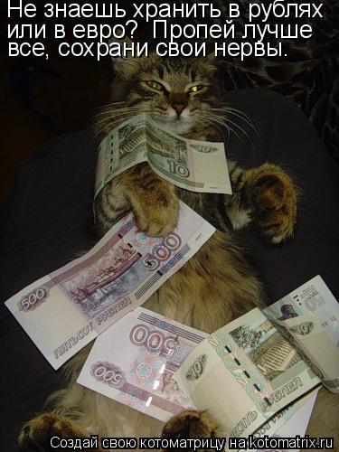 Котоматрица: Не знаешь хранить в рублях  или в евро?            Пропей лучше  или в евро?  Пропей лучше  все, сохрани свои нервы.