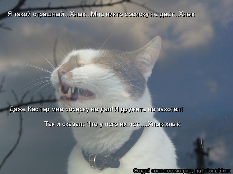 Котоматрица: Я такой страшный...Хнык...Мне никто сосиску не даёт...Хнык Даже Каспер мне сосиску не дал!И дружить не захотел! Так и сказал: Что у него их нет....