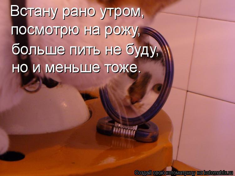 Котоматрица: Встану рано утром, посмотрю на рожу, больше пить не буду, но и меньше тоже.
