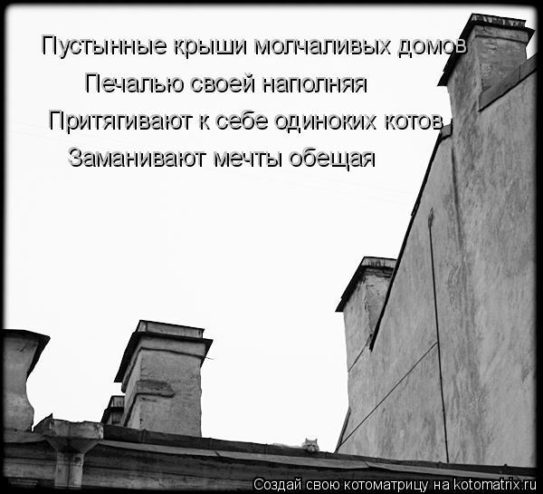 Котоматрица: Пустынные крыши молчаливых домов Печалью своей наполняя Притягивают к себе одиноких котов Заманивают мечты обещая