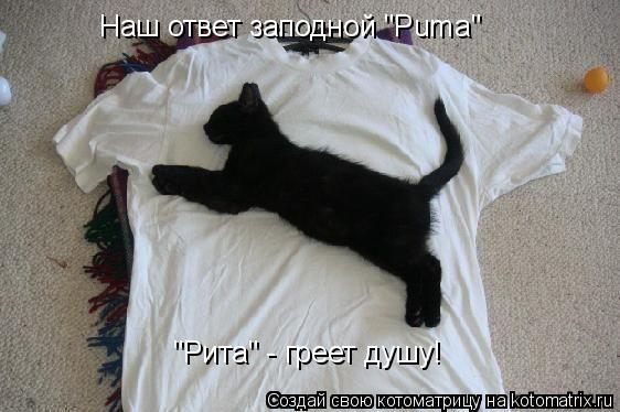 """Котоматрица: Наш ответ заподной """"Puma"""" """"Рита"""" - греет душу!"""