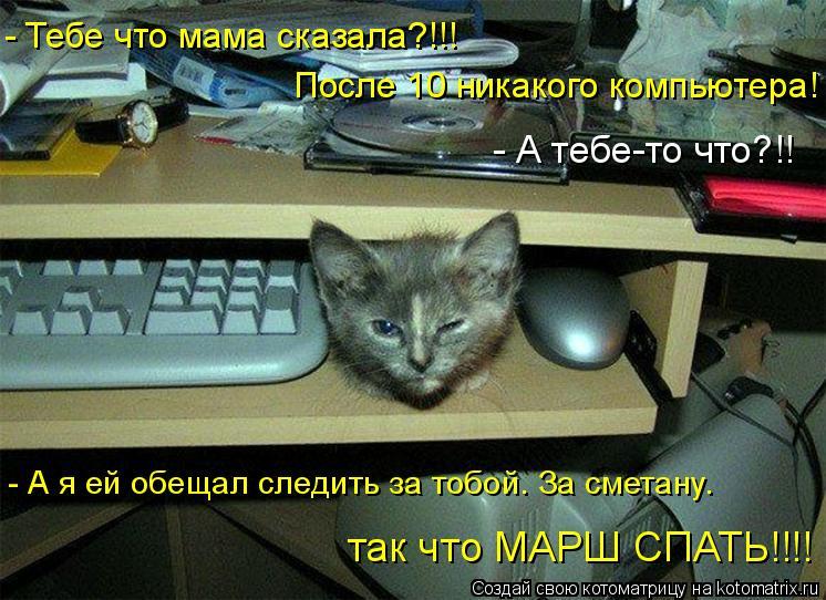 Котоматрица: После 10 никакого компьютера! - А я ей обещал следить за тобой. За сметану.  так что МАРШ СПАТЬ!!!! - Тебе что мама сказала?!!! - А тебе-то что?!!