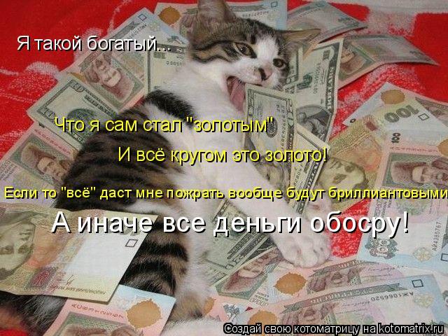 """Котоматрица: Я такой богатый... Что я сам стал """"золотым"""" И всё кругом это золото! Если то """"всё"""" даст мне пожрать вообще будут бриллиантовыми! А иначе все ден"""