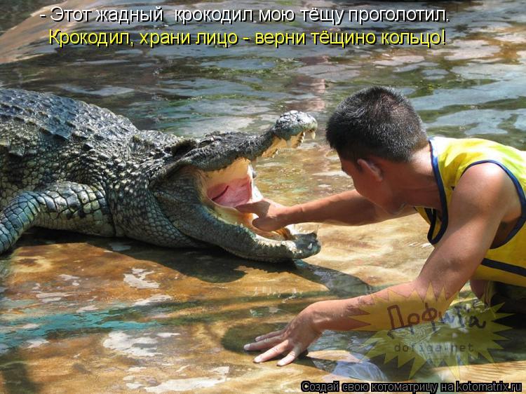 Котоматрица: - Этот жадный  крокодил мою тёщу проголотил. Крокодил, храни лицо - верни тёщино кольцо!