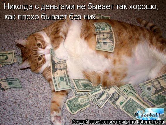 Котоматрица: Hикогда с деньгами не бывает так хоpошо,  как плохо бывает без них.