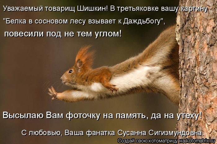 """Котоматрица: Уважаемый товарищ Шишкин! В третьяковке вашу картину """"Белка в сосновом лесу взывает к Даждьбогу"""", повесили под не тем углом! Высылаю Вам фот"""