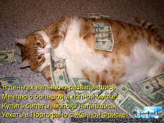 Котоматрица: В деньгах вальяжно развалившись, Мечтаю о большой и полной миске, Купить билеты, молока напившись, Уехать в Портофино с Жанной Фриске!