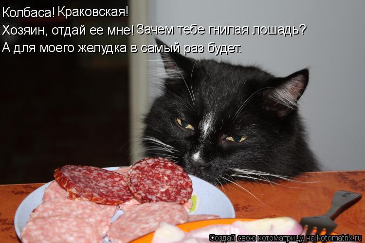 Котоматрица: Колбаса! Краковская! Хозяин, отдай ее мне! Зачем тебе гнилая лошадь? А для моего желудка в самый раз будет.