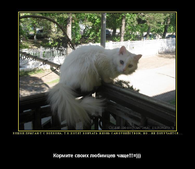 Котоматрица: Кошки прыгают с болкона, т.к.хотят кончать жизнь самоубийством, но...не получается... Кормите своих любимцев чаще!!!=)))