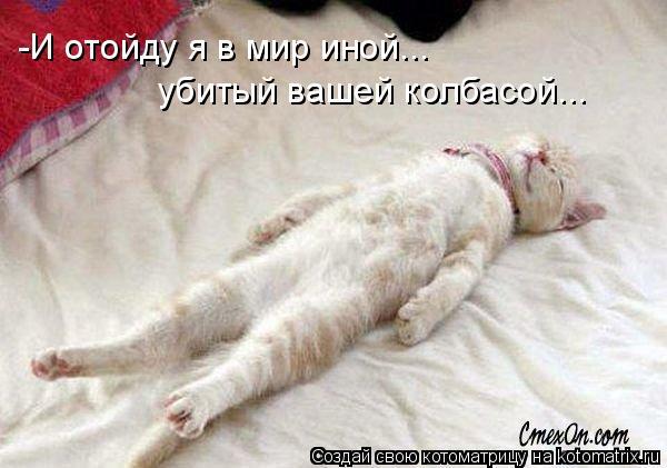 Котоматрица: -И отойду я в мир иной... убитый вашей колбасой...