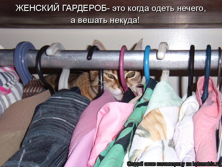 Котоматрица: ЖЕНСКИЙ ГАРДЕРОБ- это когда одеть нечего, а вешать некуда!