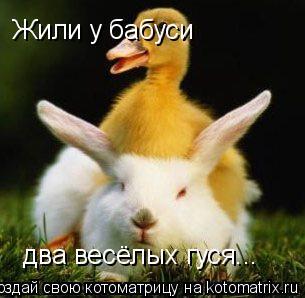 Котоматрица: Жили у бабуси два весёлых гуся... Жили у бабуси  два весёлых гуся...