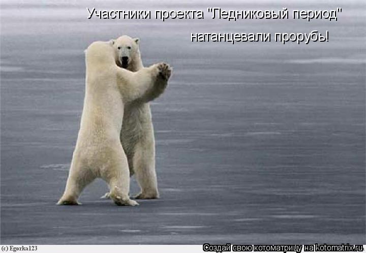 """Котоматрица: Участники проекта """"Ледниковый период"""" натанцевали прорубь!"""