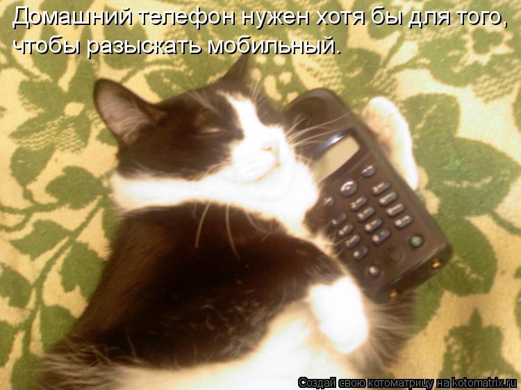 Котоматрица: Домашний телефон нужен хотя бы для того, чтобы разыскать мобильный.