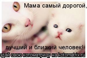 Котоматрица: Мама самый дорогой, лучший и близкий человек!
