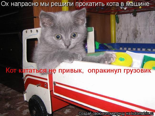 Котоматрица: Ох напрасно мы решили прокатить кота в машине Кот кататься не привык,  опракинул грузовик