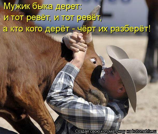 Котоматрица: Мужик быка дерет:  и тот ревёт, и тот ревёт,  а кто кого дерёт - чёрт их разберёт!