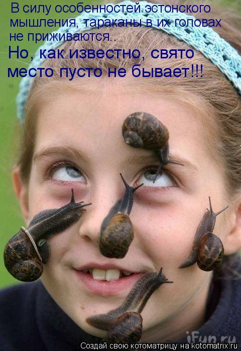 Котоматрица: В силу особенностей эстонского мышления, тараканы в их головах не приживаются..  Но, как известно, свято место пусто не бывает!!!