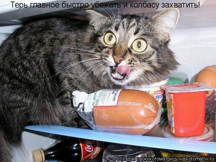Котоматрица: Терь главное быстро убежать и колбасу захватить!