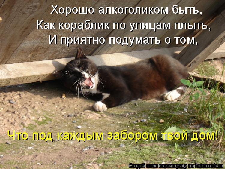 Котоматрица: Хорошо алкоголиком быть,   Как кораблик по улицам плыть,   И приятно подумать о том,   Что под каждым забором твой дом!
