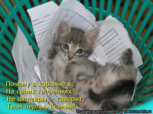 Котоматрица: - Не шедевры, - говорят, На своих творениях? Почему в корзине я Твои перлы, Ксения!