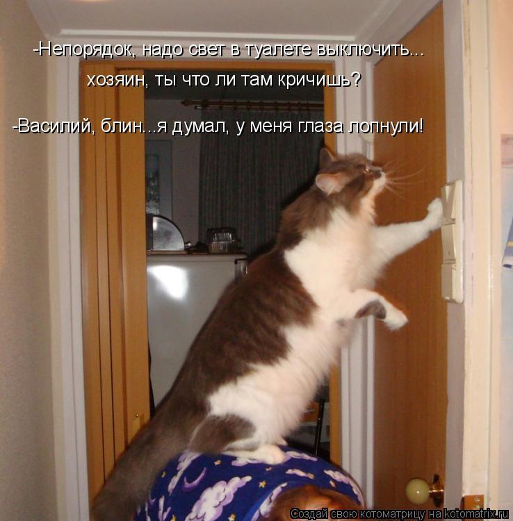 Котоматрица: -Василий, блин...я думал, у меня глаза лопнули!  -Непорядок, надо свет в туалете выключить...  хозяин, ты что ли там кричишь?