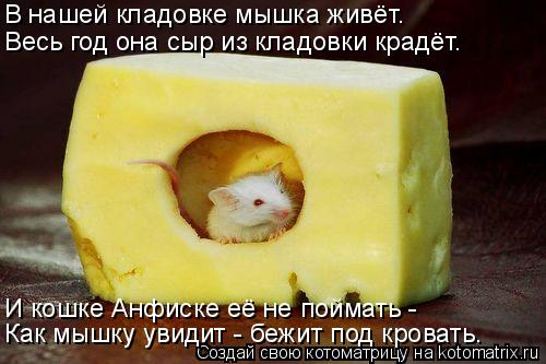 Котоматрица: В нашей кладовке мышка живёт. Весь год она сыр из кладовки крадёт. И кошке Анфиске её не поймать - Как мышку увидит - бежит под кровать.