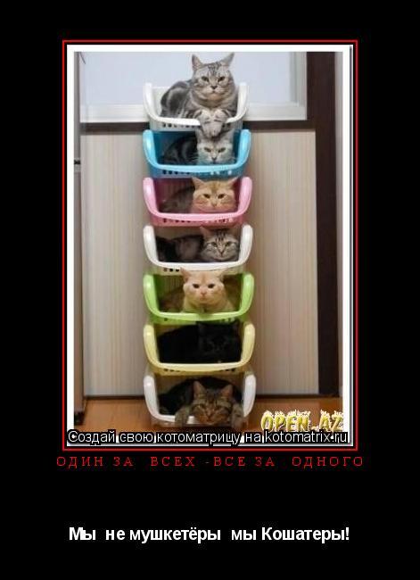 Котоматрица: Один за  всех -все за  одного Мы  не мушкетёры  мы Кошатеры!