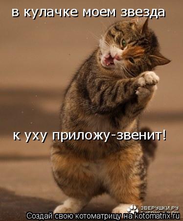 Котоматрица: в кулачке моем звезда к уху приложу-звенит!