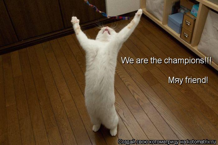 Котоматрица: We are the champions!!! Мяу friend!