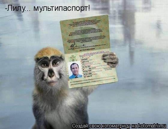 Котоматрица: -Лилу... мультипаспорт!