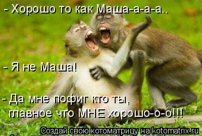 Котоматрица: - Хорошо то как Маша-а-а-а.. - Я не Маша! - Да мне пофиг кто ты,  главное что МНЕ хорошо-о-о!!!