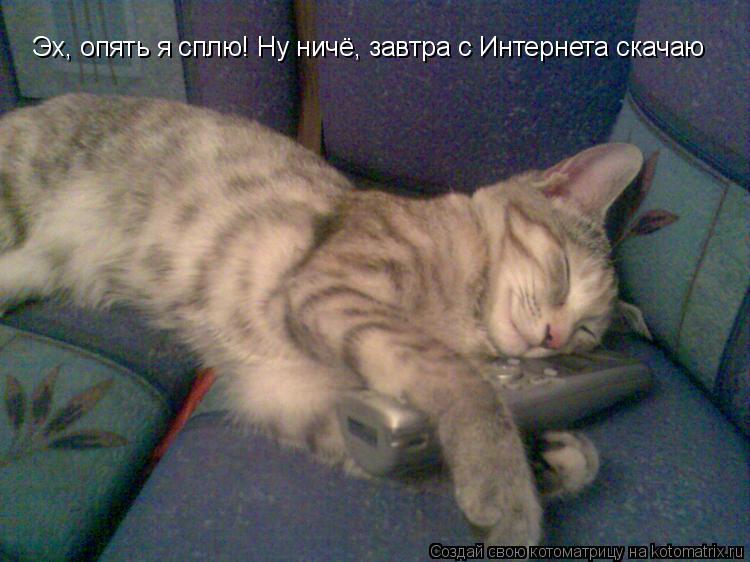 Котоматрица: Эх, опять я сплю! Ну ничё, завтра с Интернета скачаю