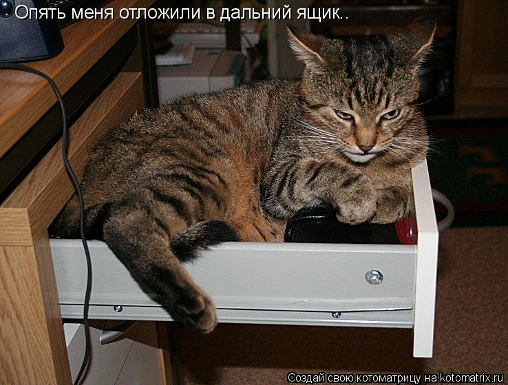 Котоматрица: Опять меня отложили в дальний ящик..
