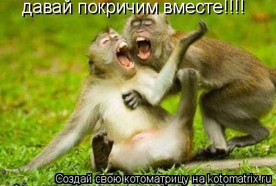 Котоматрица: давай покричим вместе!!!!