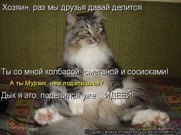Котоматрица: Хозяин, раз мы друзья давай делится. Ты со мной колбасой, сметаной и сосисками! А ты Мурзик, чем поделишься? Дык я это, поделился уже …. ИДЕЕЙ!