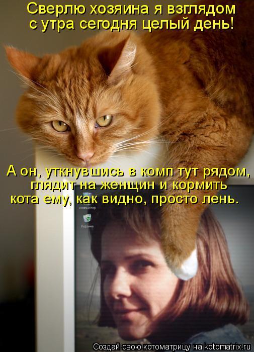 Котоматрица: Сверлю хозяина я взглядом с утра сегодня целый день! А он, уткнувшись в комп тут рядом, кота ему, как видно, просто лень. глядит на женщин и ко