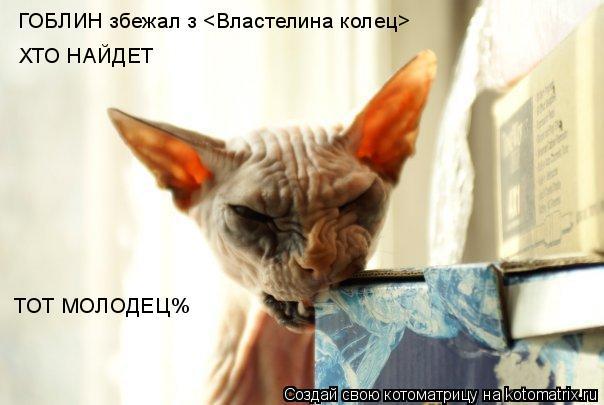 Котоматрица: ГОБЛИН збежал з <Властелина колец> ХТО НАЙДЕТ  ТОТ МОЛОДЕЦ%