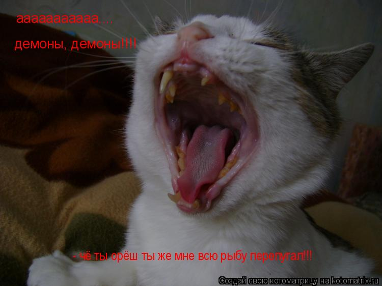 Котоматрица: ааааааааааа.... демоны, демоны!!!! - чё ты орёш ты же мне всю рыбу перепугал!!!