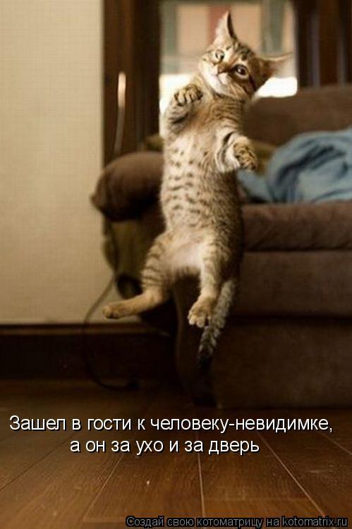 Котоматрица: Зашел в гости к человеку-невидимке,  а он за ухо и за дверь