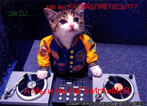 Котоматрица: Эй DJ..... как вы РАСЛАБЛЯЕТЕСЬ??? А Мы и Не НаПрИгАеМсЯ....