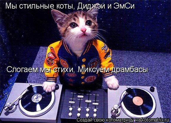 Котоматрица: Мы стильные коты, Диджэи и ЭмСи Слогаем мы стихи, Миксуем драмбасы