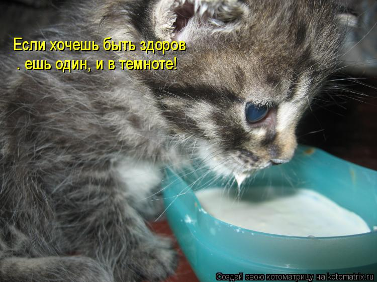 Котоматрица: Если хочешь быть здоров  — ешь один, и в темноте!