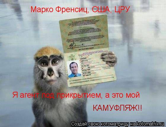 Котоматрица: Марко Френсиц, США, ЦРУ Я агент под прикрытием, а это мой  КАМУФЛЯЖ!!