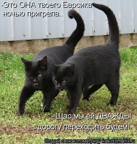 http://kotomatrix.ru/images/lolz/2009/06/13/mx.jpg