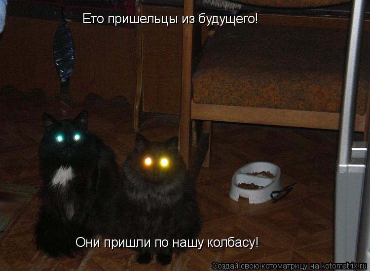 Котоматрица: Ето пришельцы из будущего! Они пришли по нашу колбасу!
